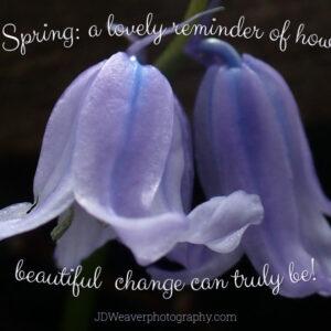 Spring Change
